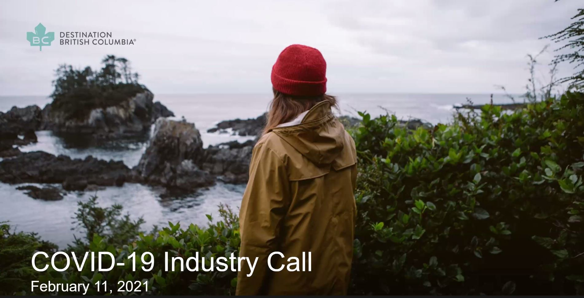 Industry Call: February 11, 2021