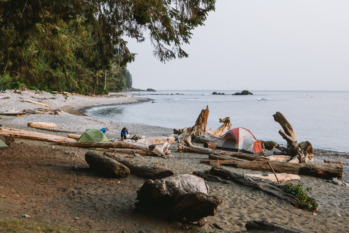 Apps make it easy to navigate BC's wealth of summer adventures (Tourism Vancouver Island/Ben Giesbrecht).